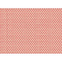 PAPELVARESE cm.70x100 (VRS 001)
