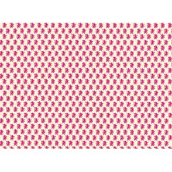 PAPEL REGALO cm.50x70 Rollo 2 hojas (VRS 005RH)