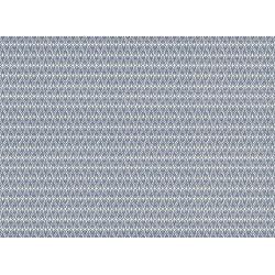PAPEL REGALO cm.50x70 Rollo 2 hojas (VRS 017RH)