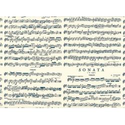 PAPEL REGALO cm.50x70 Rollo 2 hojas (VRS 020RH)