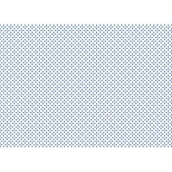 PAPEL REGALO cm.50x70 Rollo 2 hojas (VRS 025RH)